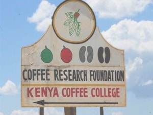 Kenya Coffee Tour